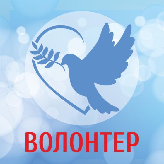 """""""Волонтер"""" подвел итоги 2018 года 9"""
