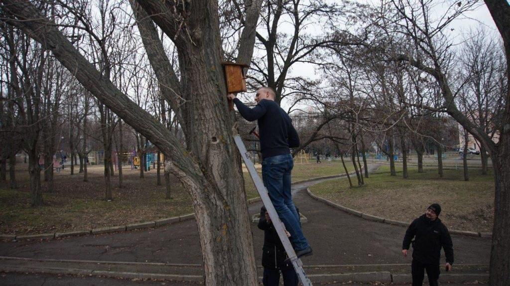 «Мир Луганщине» провел уборку столичного парка 7