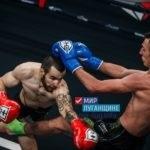 Спортсмен из ЛНР достойно себя показал в международном турнире Fair Fight