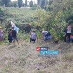 Активисты Есауловского первичного отделения ОД «Мир Луганщине» произвели уборку реки Крепенькая