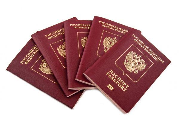 Жителям ЛНР и ДНР не нужно платить госпошлину при получении гражданства РФ 1