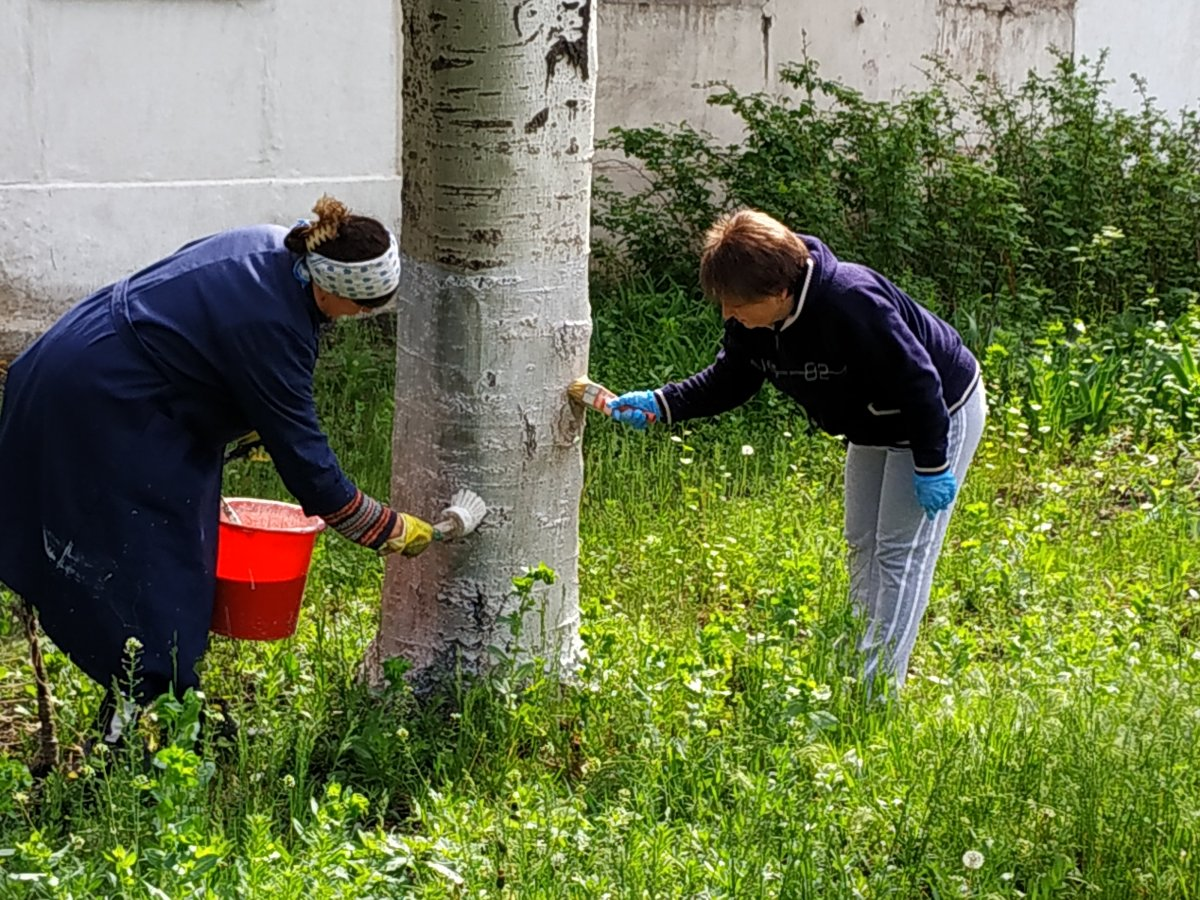 В селе Червоный Прапор активисты ОД «Мир Луганщине» провели субботник