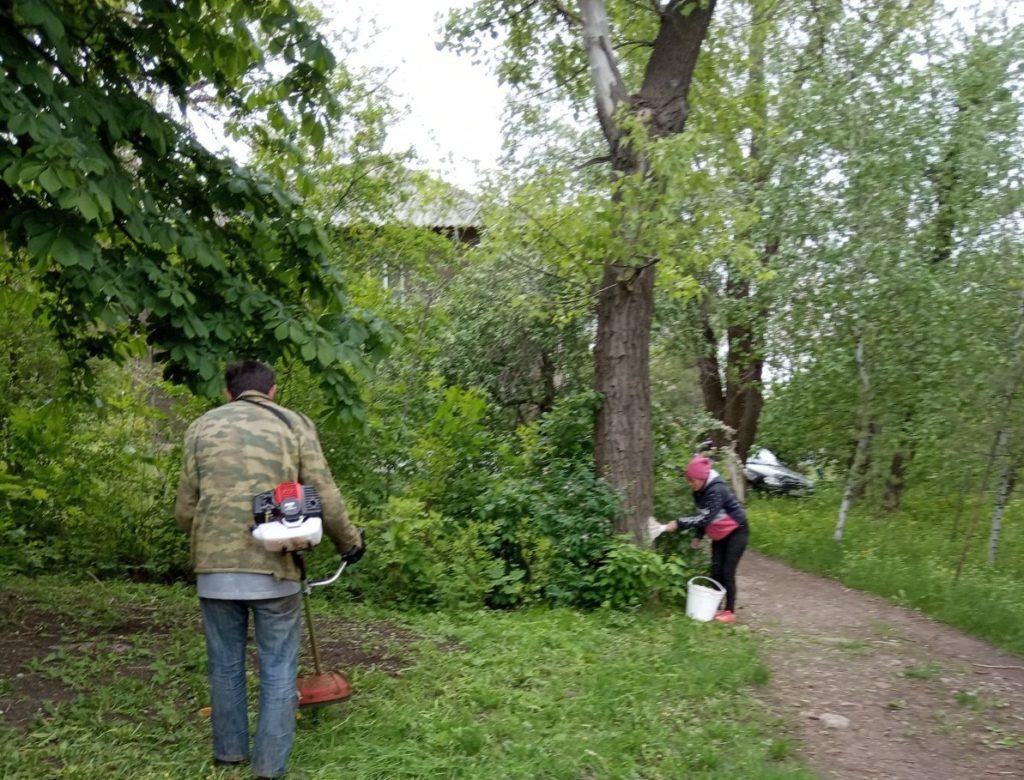 В Комиссаровке активисты ОД «Мир Луганщине» провели субботник