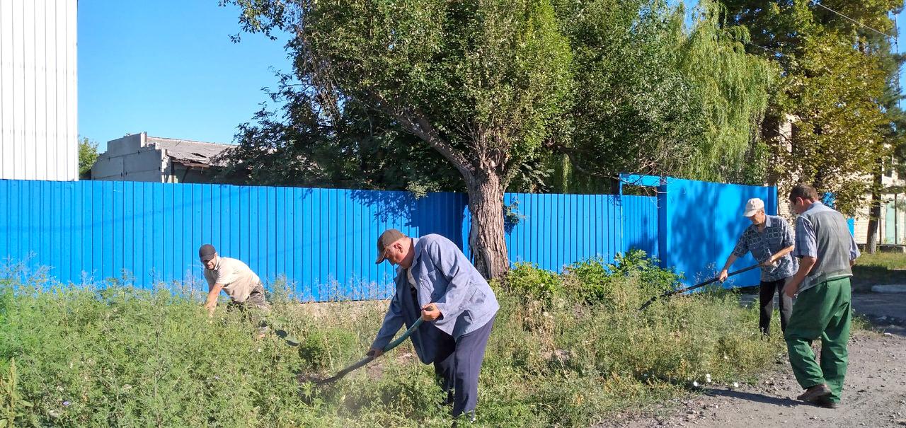 В Антрацитовском районе активисты устроили субботник