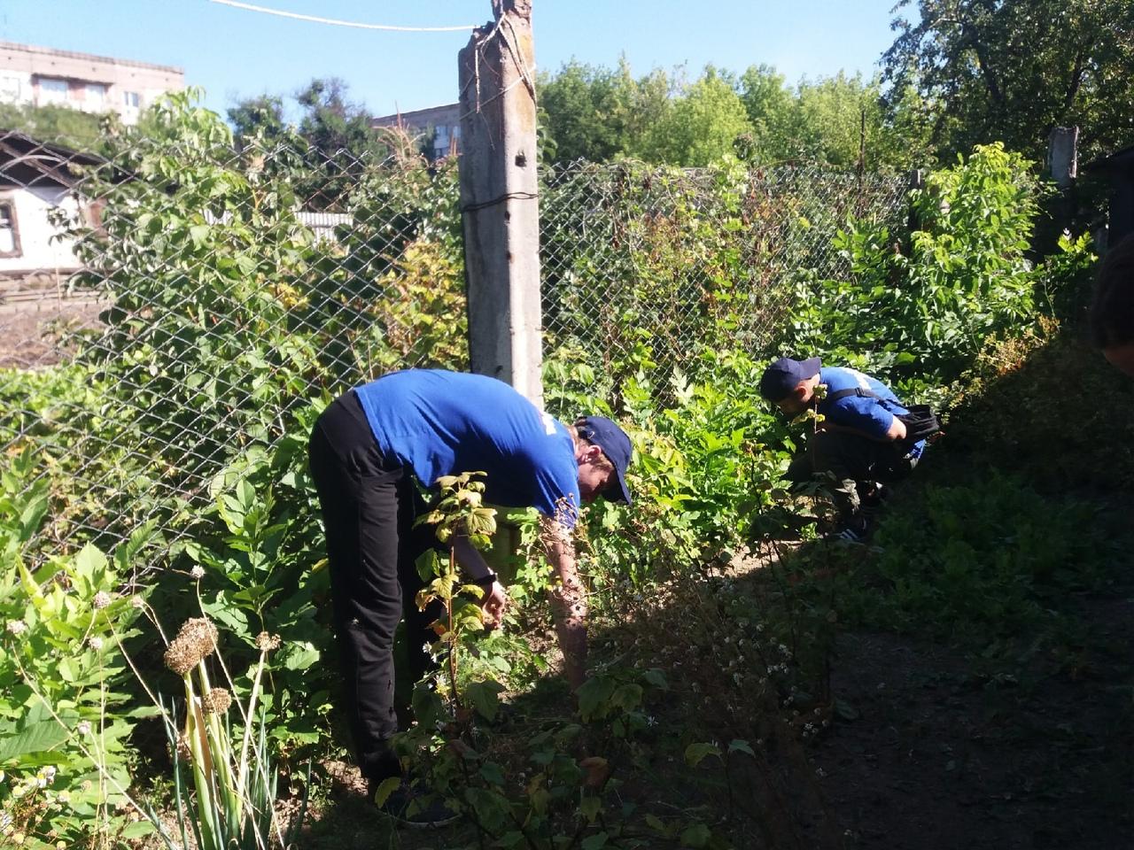 Активисты проектов ОД «Мир Луганщине» помогли жительнице Артёмовска