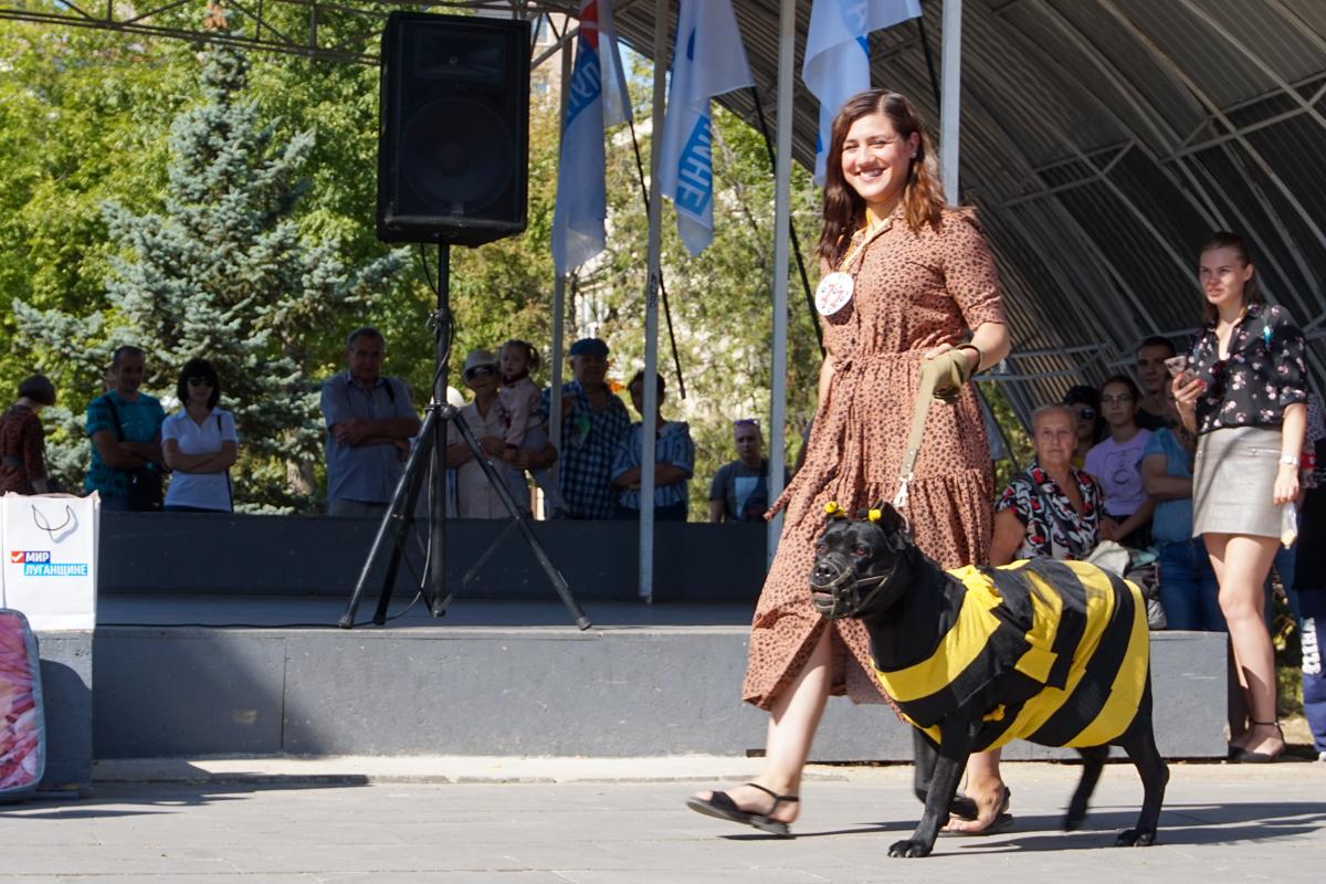 Шоу «Леди на велосипеде» и зоодефиле «Четыре лапы» прошли в Луганске в честь Дня города 4