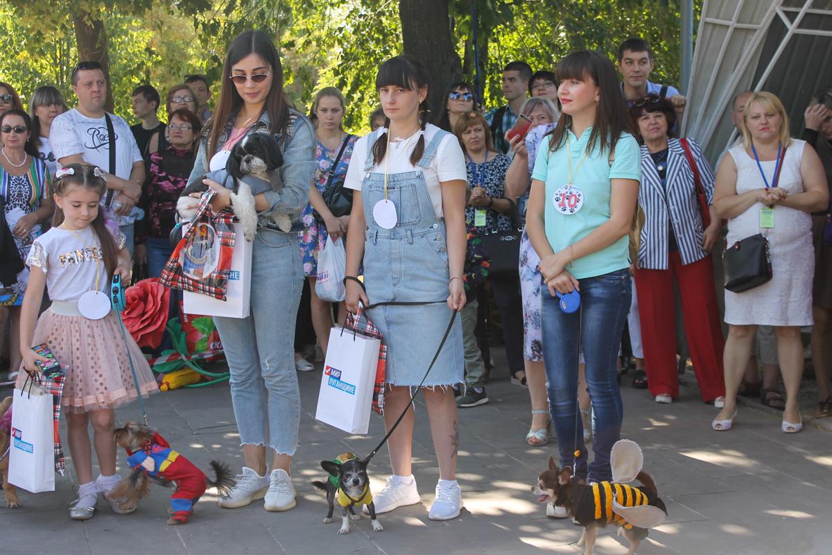 Шоу «Леди на велосипеде» и зоодефиле «Четыре лапы» прошли в Луганске в честь Дня города 8