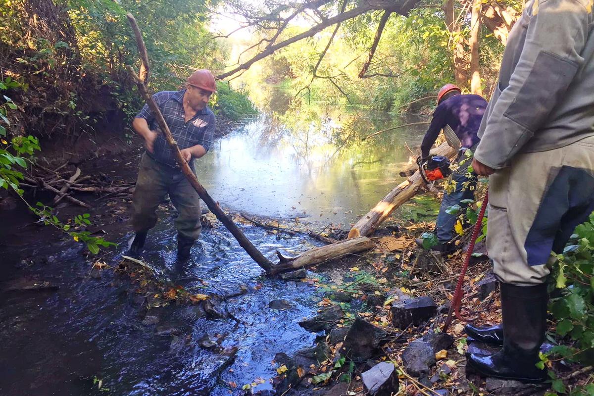 В Лутугинском районе активисты ОД «Мир Луганщине» расчистили русло реки Ольховая