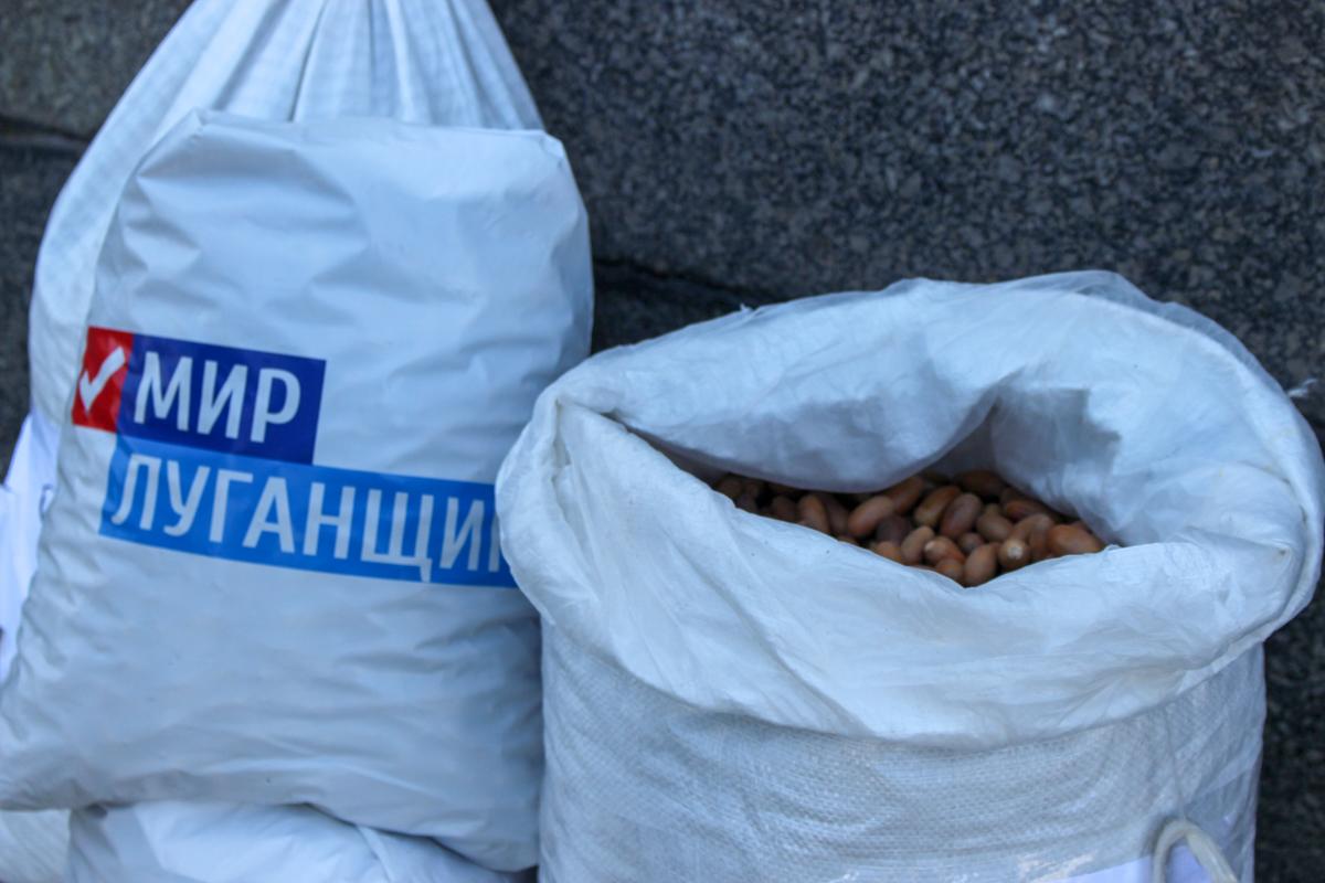 Депутаты Народного Совета ЛНР передали представителям Ивановского лесхоза 87 килограмм жёлудей 1