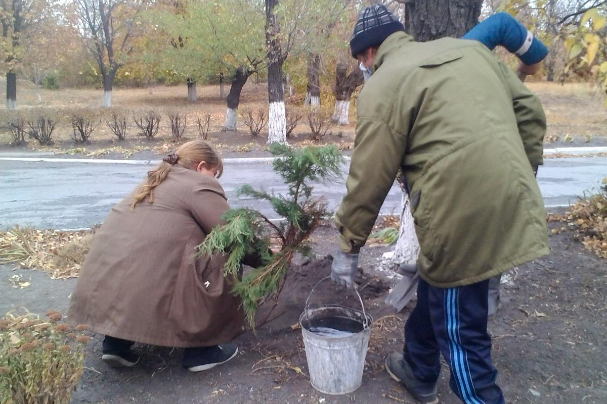 Активисты из посёлка городского типа Крепенский провели эколого-патриотическую акцию 2