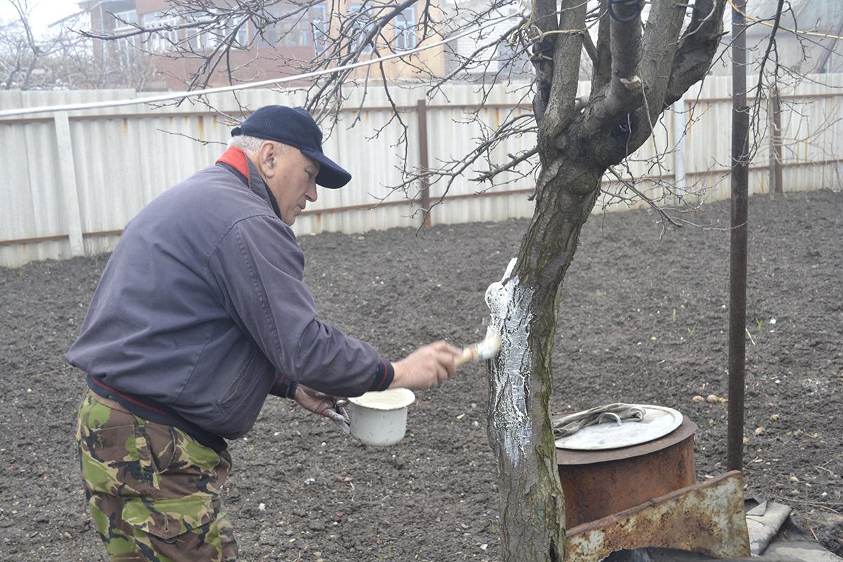 Работники ОД «Мир Луганщине» в рамках акции «Начни с себя» оказали помощь жителям Республики 4