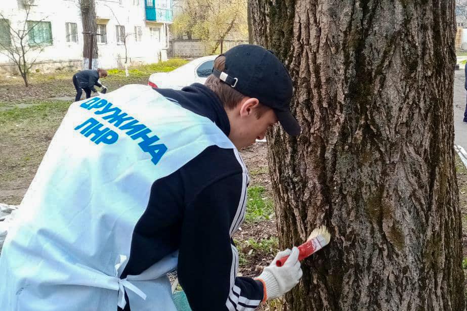 Активисты проекта «Дружина» из Антрацита помогли пенсионерке в уборке придомовой территории