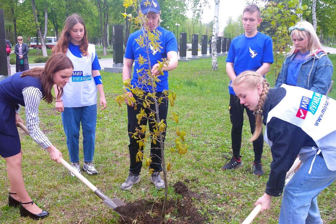 В Свердловске высадили деревья в рамках проекта Международный Сад Мира и Памяти защитников Отечества «Благодатное кольцо»