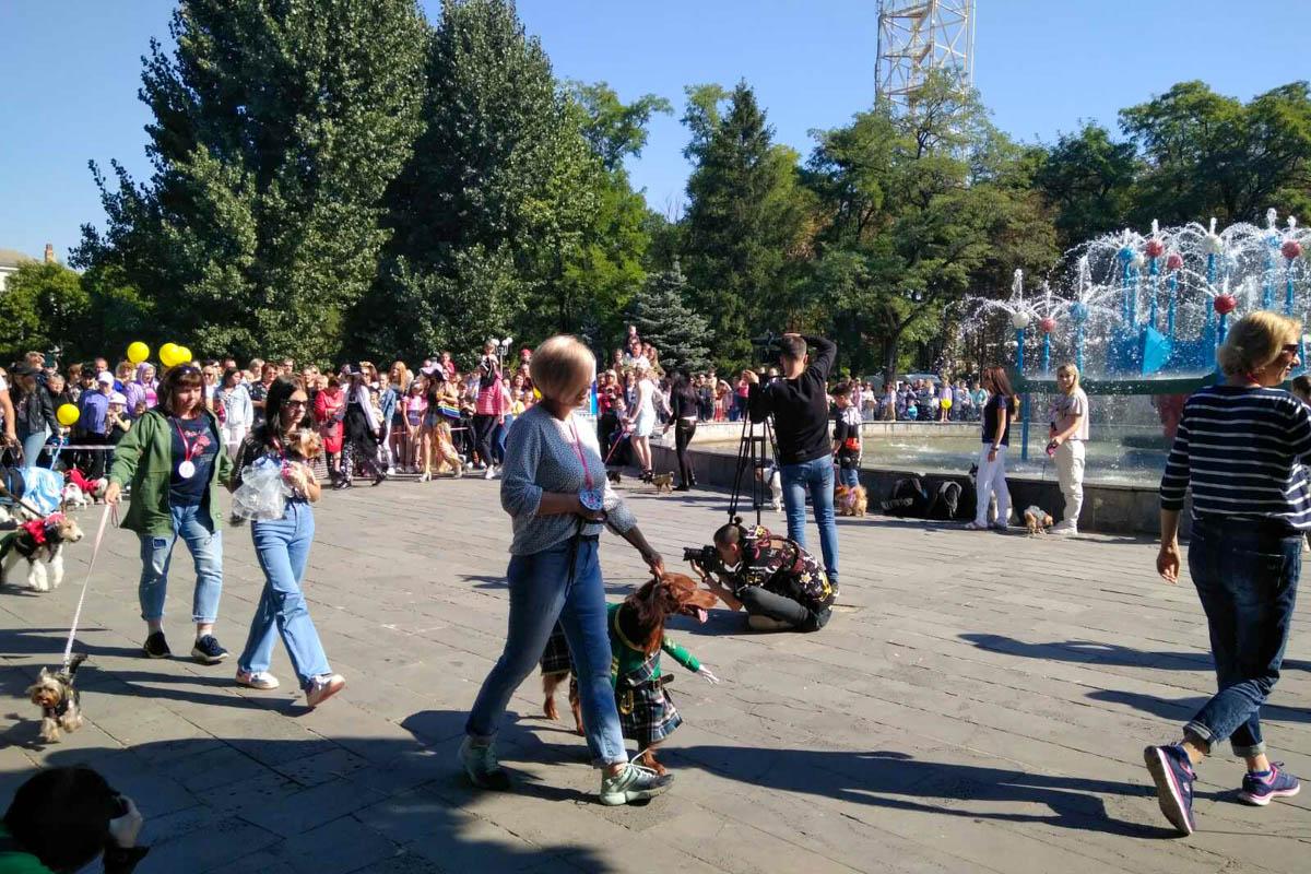 В Луганске состоялись зоодефиле «Четыре лапы» и шоу «Леди на велосипеде» ко Дню города