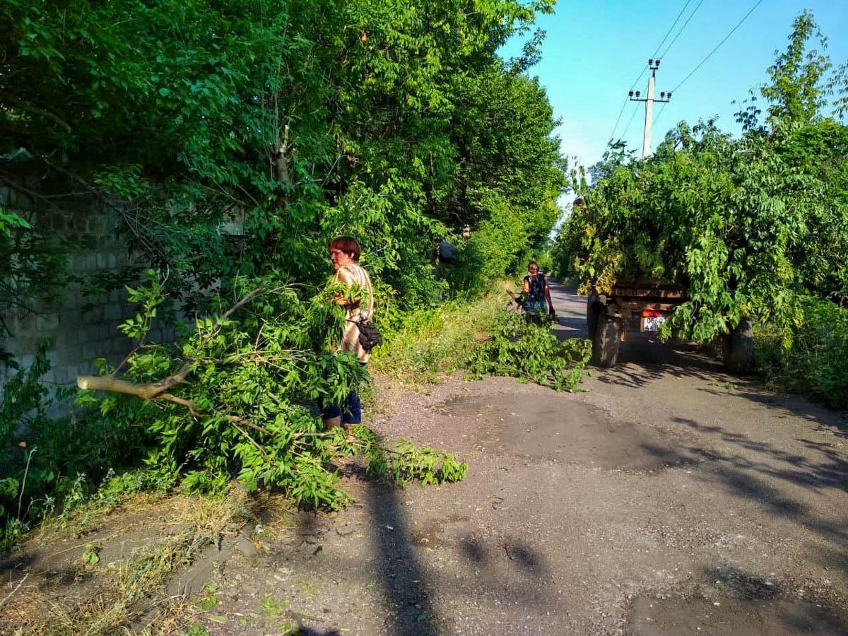 При содействии депутата Андрея Губарева в городе Ирмино обрезали деревья